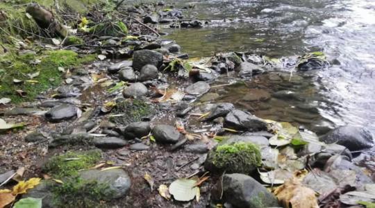 Čistá řeka Jizera může být i díky vám. Foto: pořadatelé